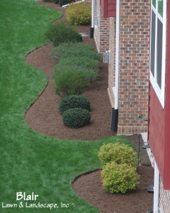 Blair Lawn & Landscape Maintenance