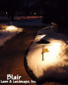 Blair Lawn & Landscape Lighting